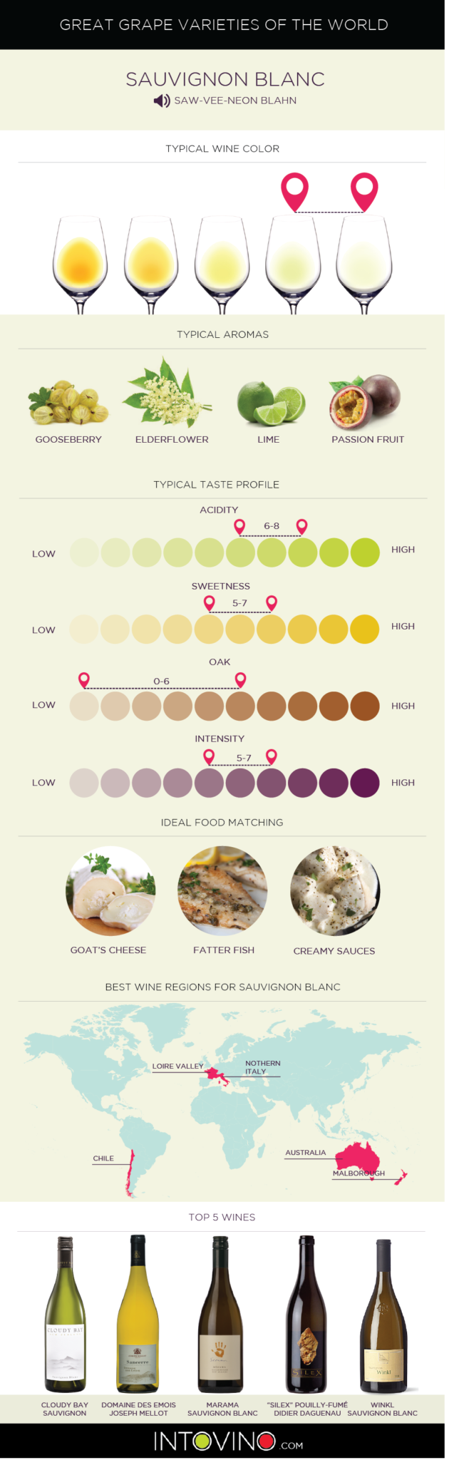 Guide to Sauvignon Blanc