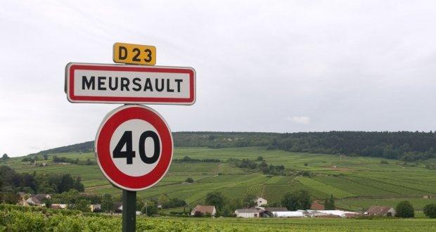 meursault vineyard