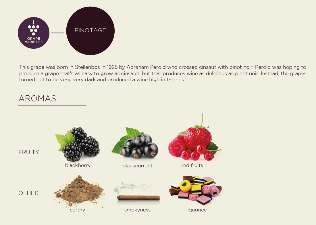 Pinotage grape variety poster