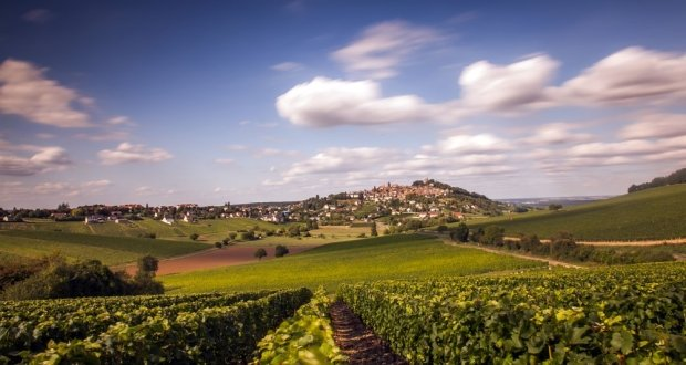 Sancerre Guide