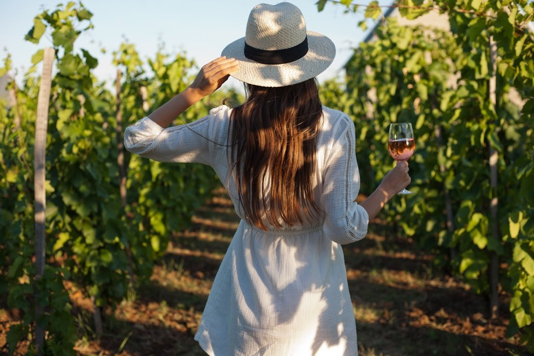 The Essential guide to Cinsault
