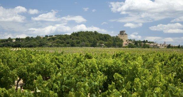 Chateauneuf du Pape Wine