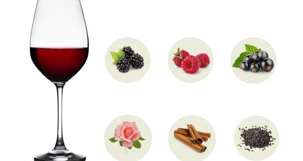 nose of wine